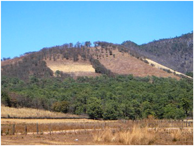 Landowners' perceptions of conservation in the Sierra Occidental of Jalisco, Mexico