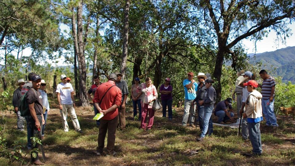 La Vida Verde: Plan de ecoturismo ejido La Estancia de Landeros, Jalisco, Mexico