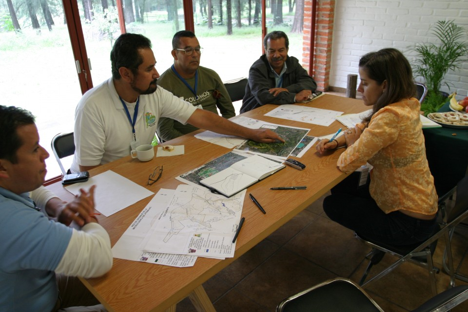 Los Colomos Forest: Planning for next year… and the next 100