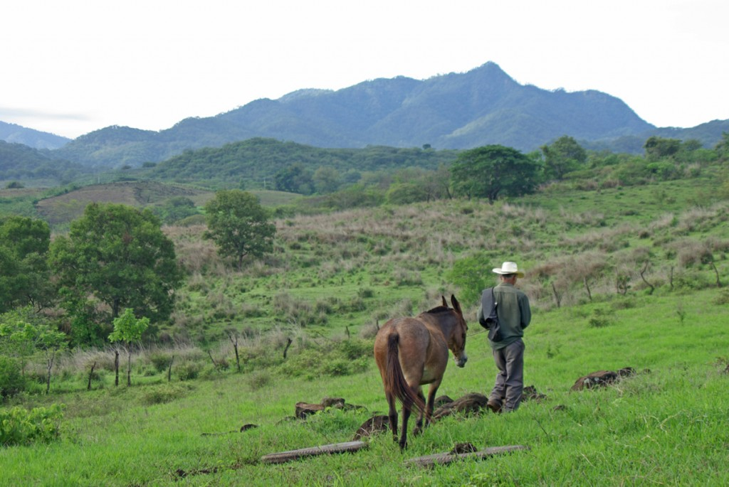 The landscape for low-impact ecotourism surrounding La Estancia.