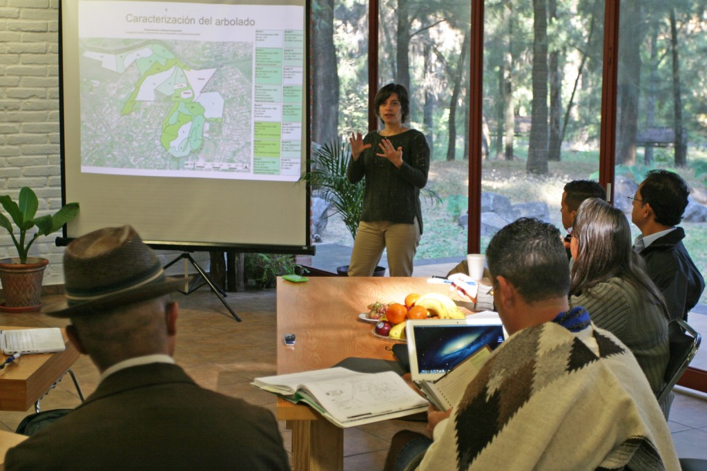 Workshop with park managers, foresters, academics, consultants and community members.
