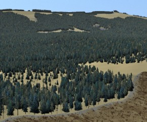 Simulating visual resource management in BC forests